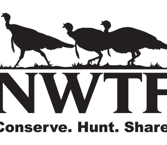 NWTF Auction